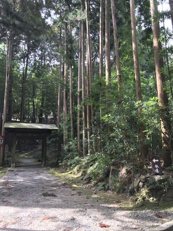 デビッド・ボウイが愛した正伝寺へ~京都・大阪小旅行