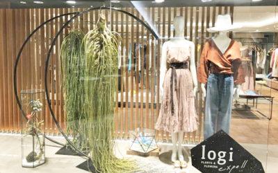 花とアートのミニ博覧会 「logi PLANTS&FLOWERS×GALLARDAGALNTE」