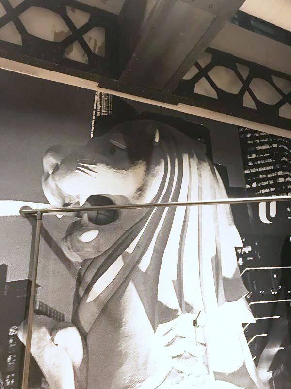 ヨウジヤマモト青山本店でレスリー・キー氏がシンガポールで撮影した写真展「ASIA DESTINATION -Singapura-」開催