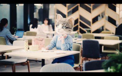 ポール & ジョー アクセソワ、猫のショートムービー「猫のあるある話」を公開