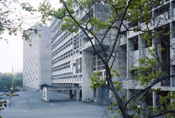 Secretariat, 2013©︎Takashi Homma Courtesy of TARO NASU